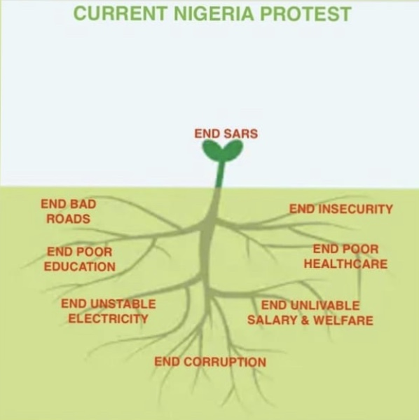 Many roots related to corruption and bad governance in Nigeria leading to the growth of a shrub called End SARS